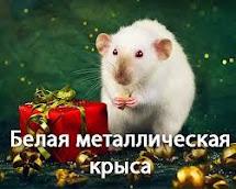 2020 — год белой металлической крысы