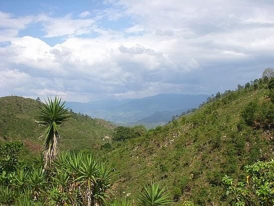 Yoro (Honduras)