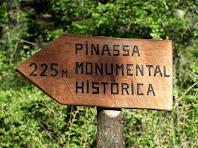 Indicador a la Pinassa monumental històrica