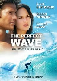 The Perfect Wave 2014