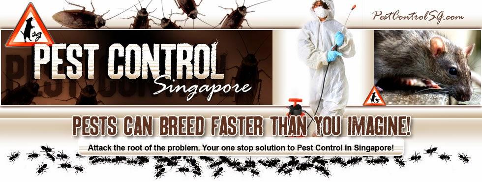 Pest Control Sg