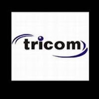 Tricom India's Q2 Consolidated Net Dips 17%