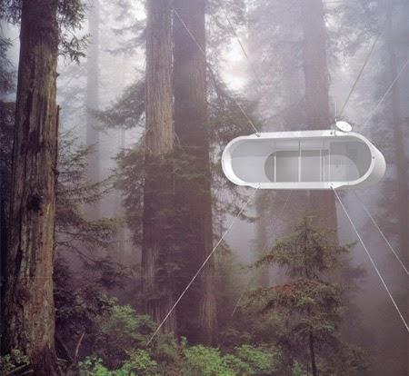 Lifepod Tree House [lensaglobe.com]
