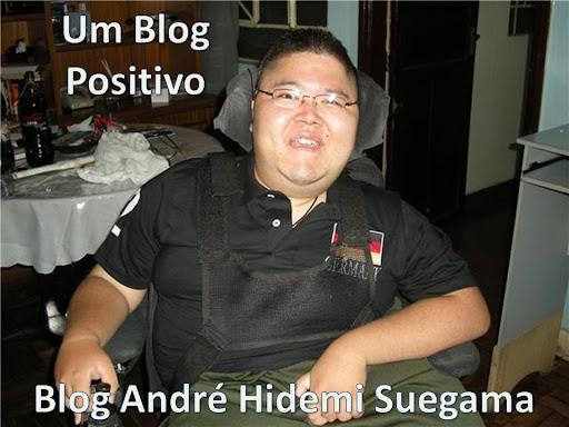 Blog André Hidemi Suegama