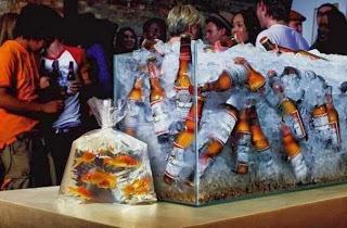aquário com gelo e cerveja e peixes em saquinho do lado de fora