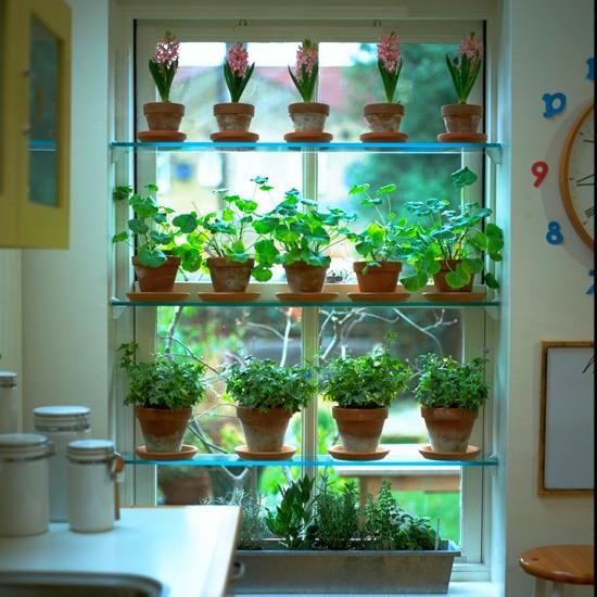 The Jordans Herb Garden Inspiration