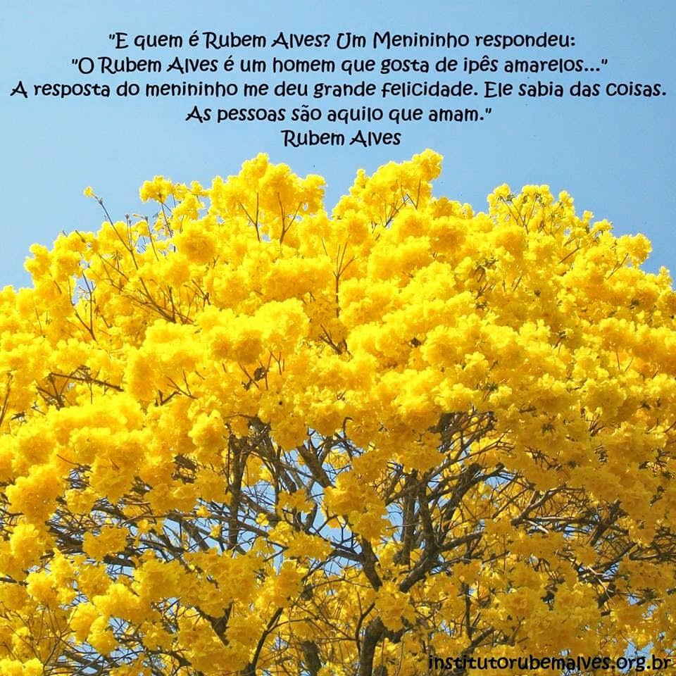 ipe de jardim familia: que amam disse ele brasília 30 de julho de 2014 paulo das lavras