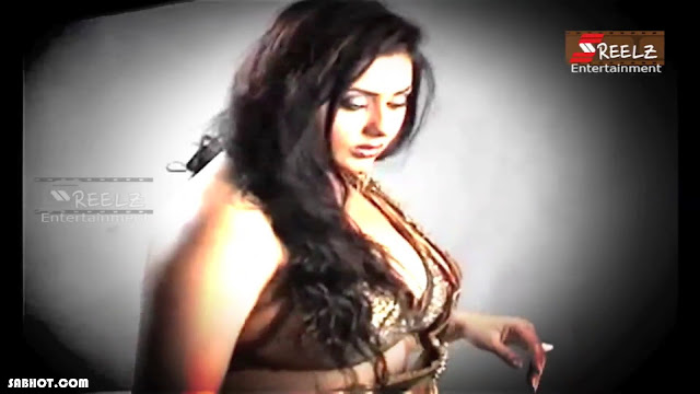 namitha hot photo shoot 2013