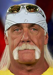 Hulk Hogan Handlebar Mustache