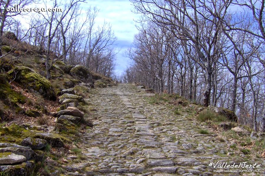 Camino Real. RUTA PR CC 15