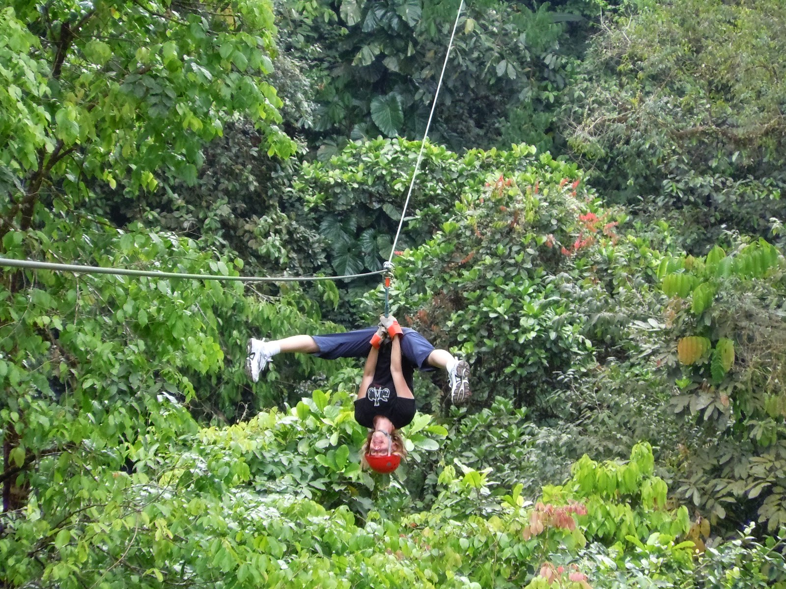 how to visit rainforests in san jose