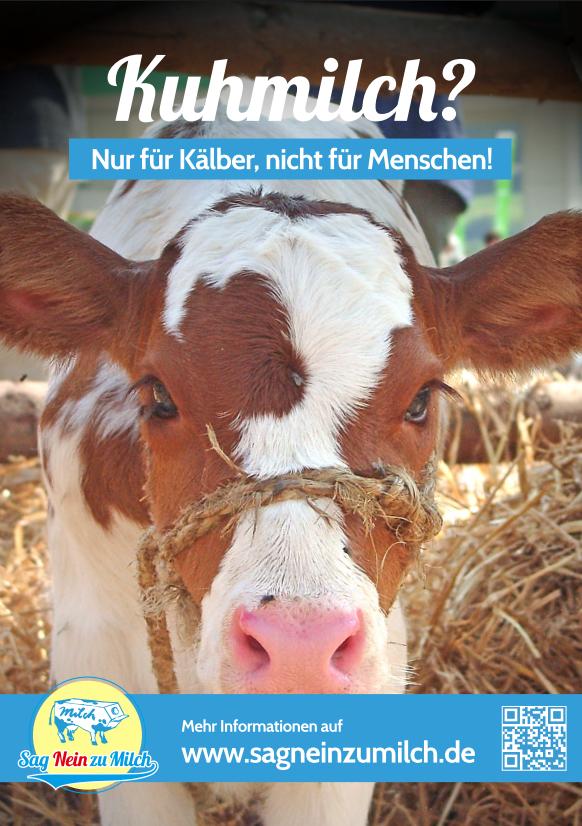 www.sagneinzumilch.de