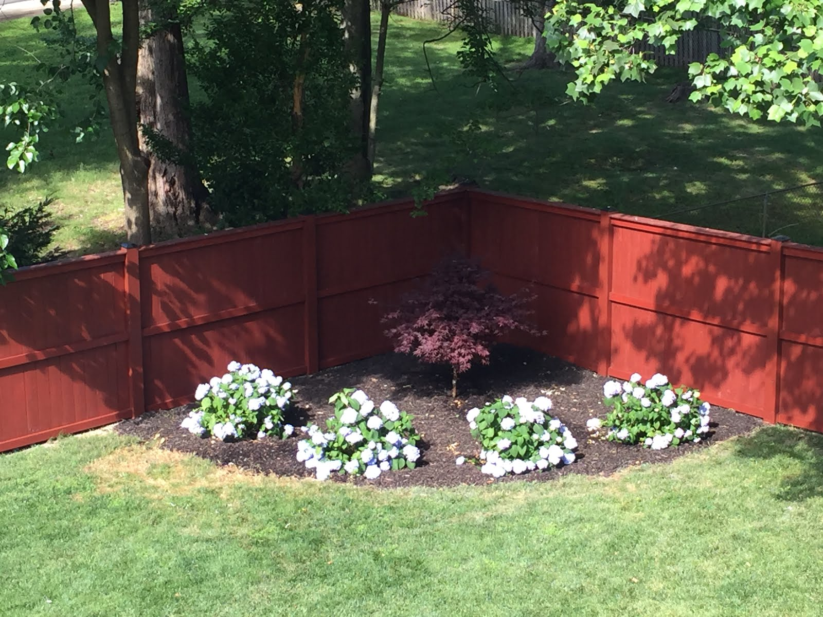 Chris' memorial garden