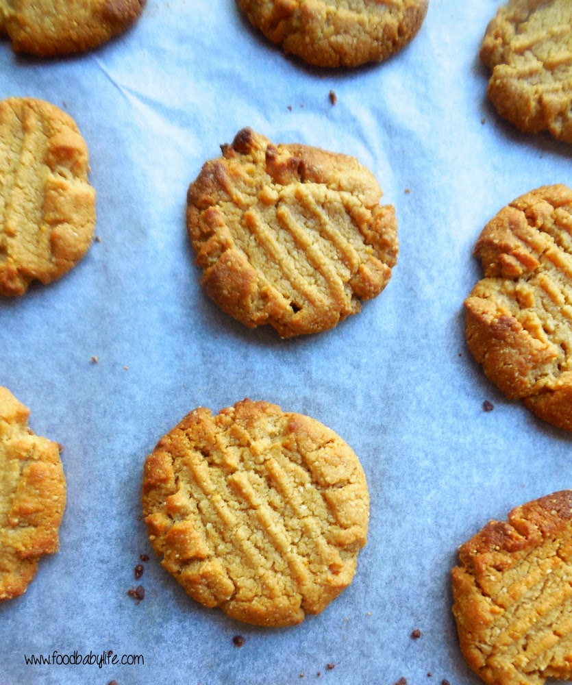 5 Ingredient Gluten Free Flourless Peanut Butter Cookies © www.foodbabylife.com