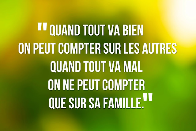 ... comparison introduction dissertation sur la vie de famille the w in