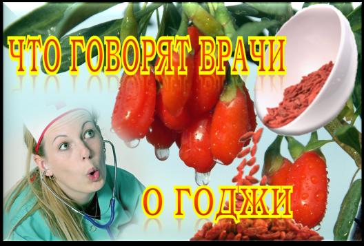 как похудеть ягодами годжи