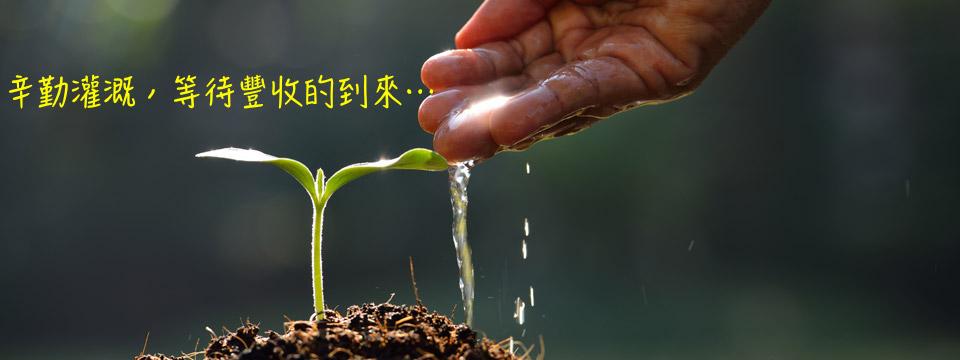 學習樹-471888