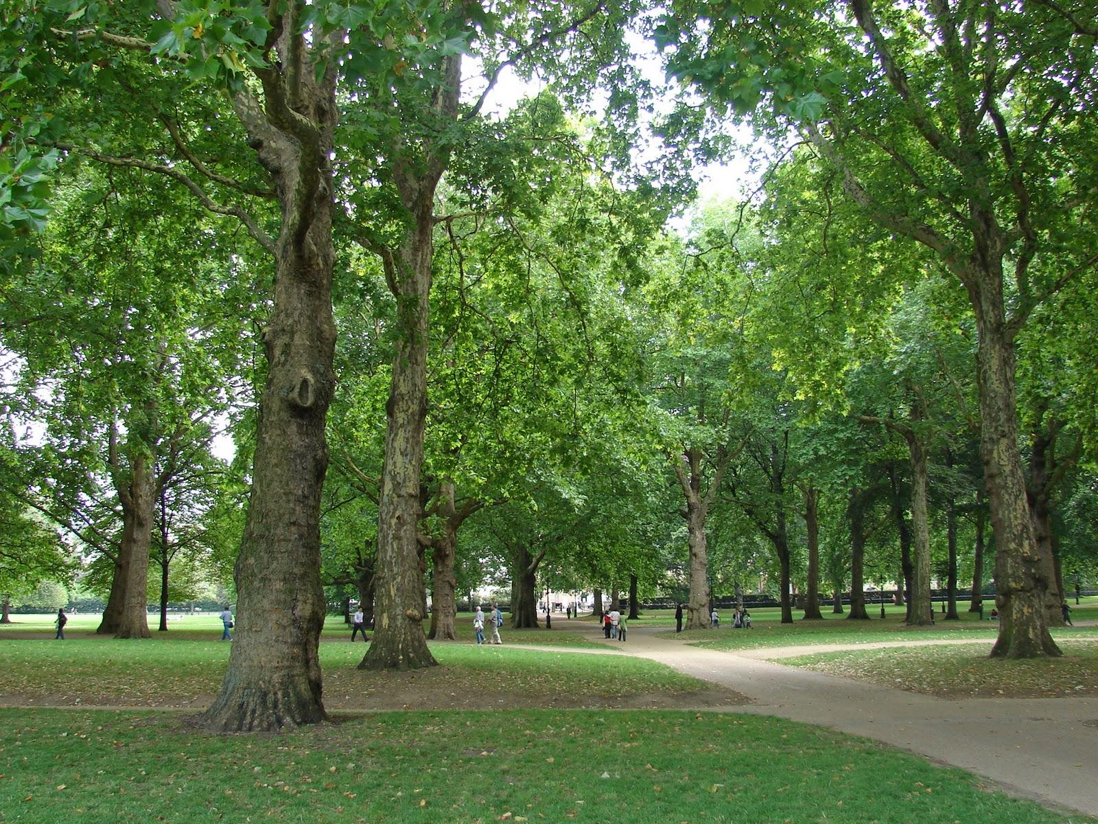 Paisajismo pueblos y jardines el green park de londres for Arboles para jardin