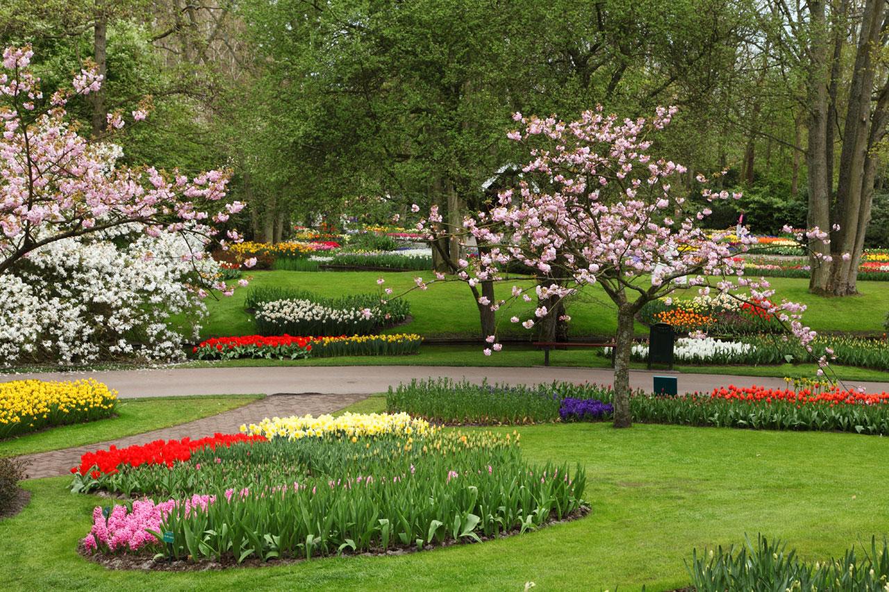Keindahan dekorasi taman bunga relaks minda for Most beautiful garden trees
