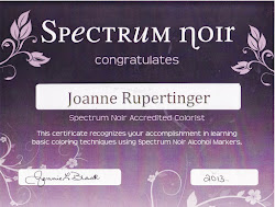 spectrum noir accredited colourist