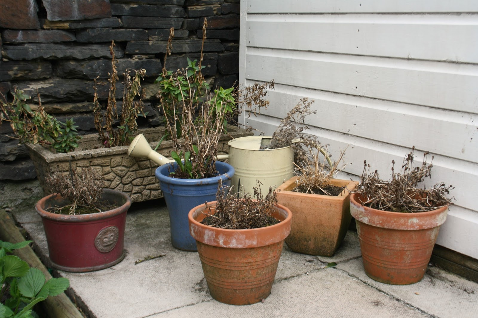 Tales from a happy house perking up your plant pots for House plant pots