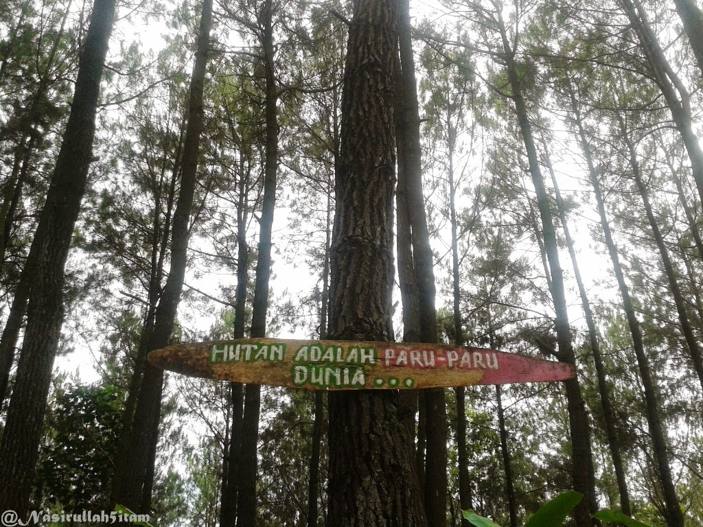 """Tulisan """"Hutan adalah paru-paru dunia"""""""