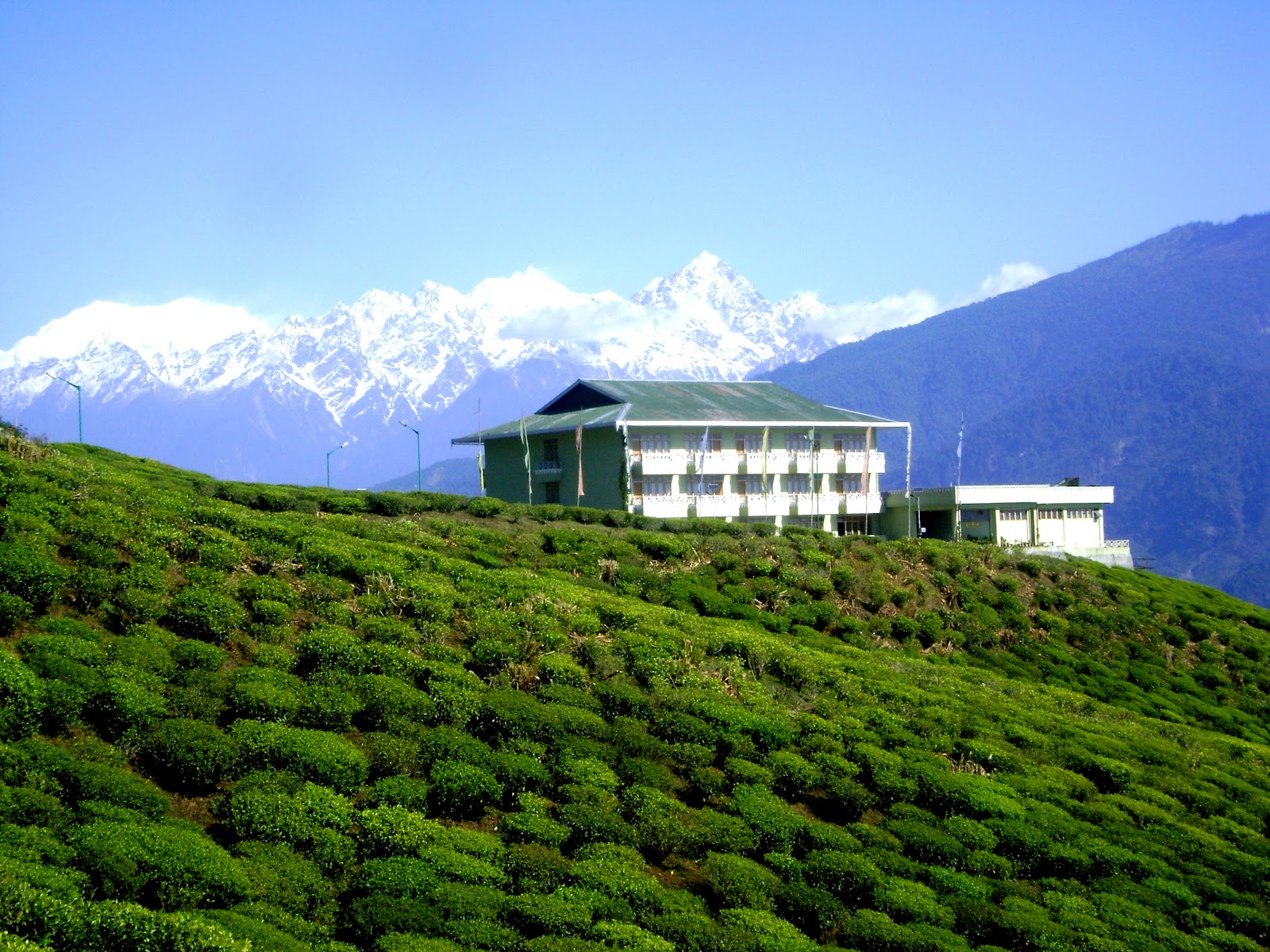 Cherry Village Resort Pelling India