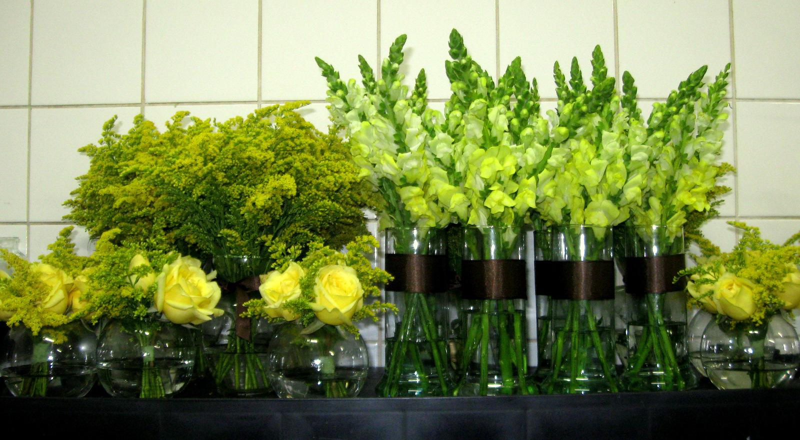 Dulcin ias e madalenas decora o de festas vii for Plantas baratas