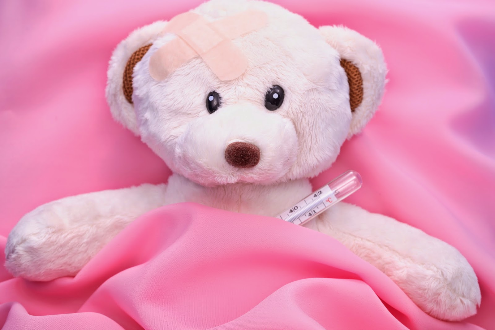 Teddy-with-fever-in-bed-image-4368x2912.jpg