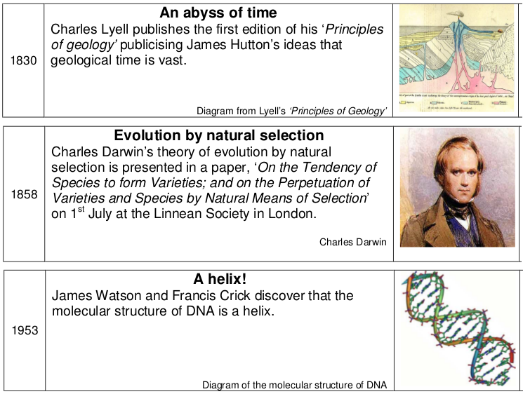 an analysis of the theory of evolution in a typical american high school The american high school mathematics examination: a 50 year retrospective stephen b maurer, harold b reiter, and leo j schneider on february 9, 1999 students across america participated in the american high school math exam.