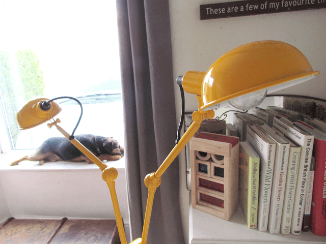 yellow lamp in the front room