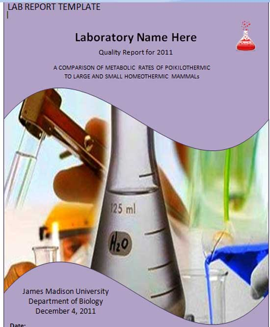 Microsoft Word Templates: Lab Report Template