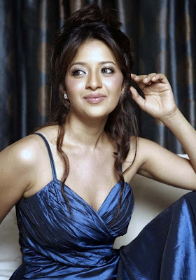 Reema Sen Hot in Blue Dress Photos
