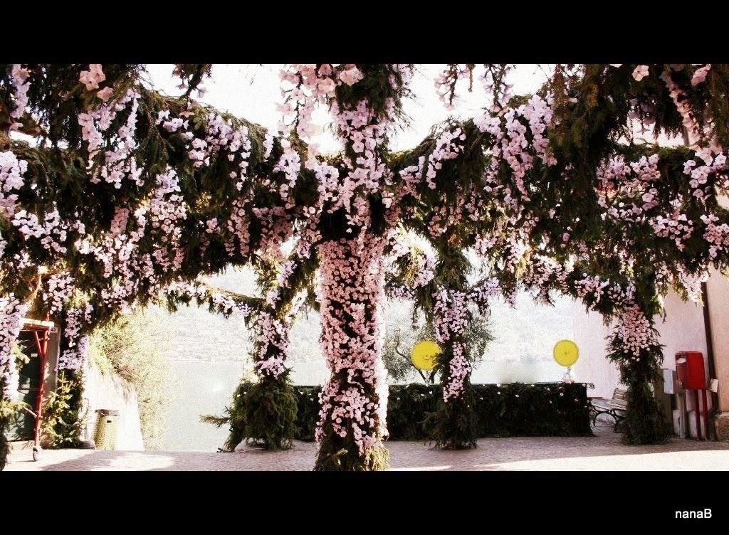 festa fiori montisola