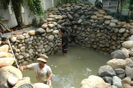 kolam ikan koi,kolam minimalis ,jasa pembuat taman ,kolam