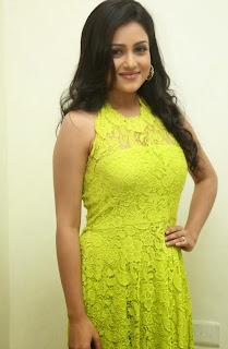 Actress Mishti Chakraborty Picture Gallery in Long Dress at Chinnadana Nee Kosam Audio Launch freshgallery.in23.jpg