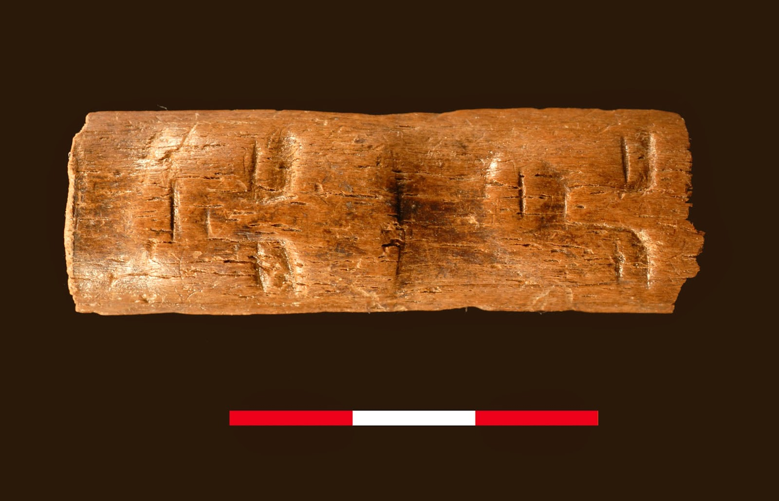 9,000 year old carved bone 'wand' found in Syria