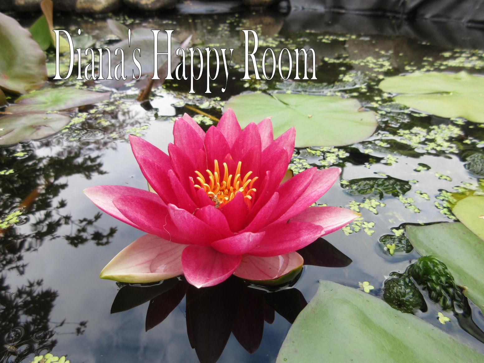 Dianashappyroom.blogspot.com
