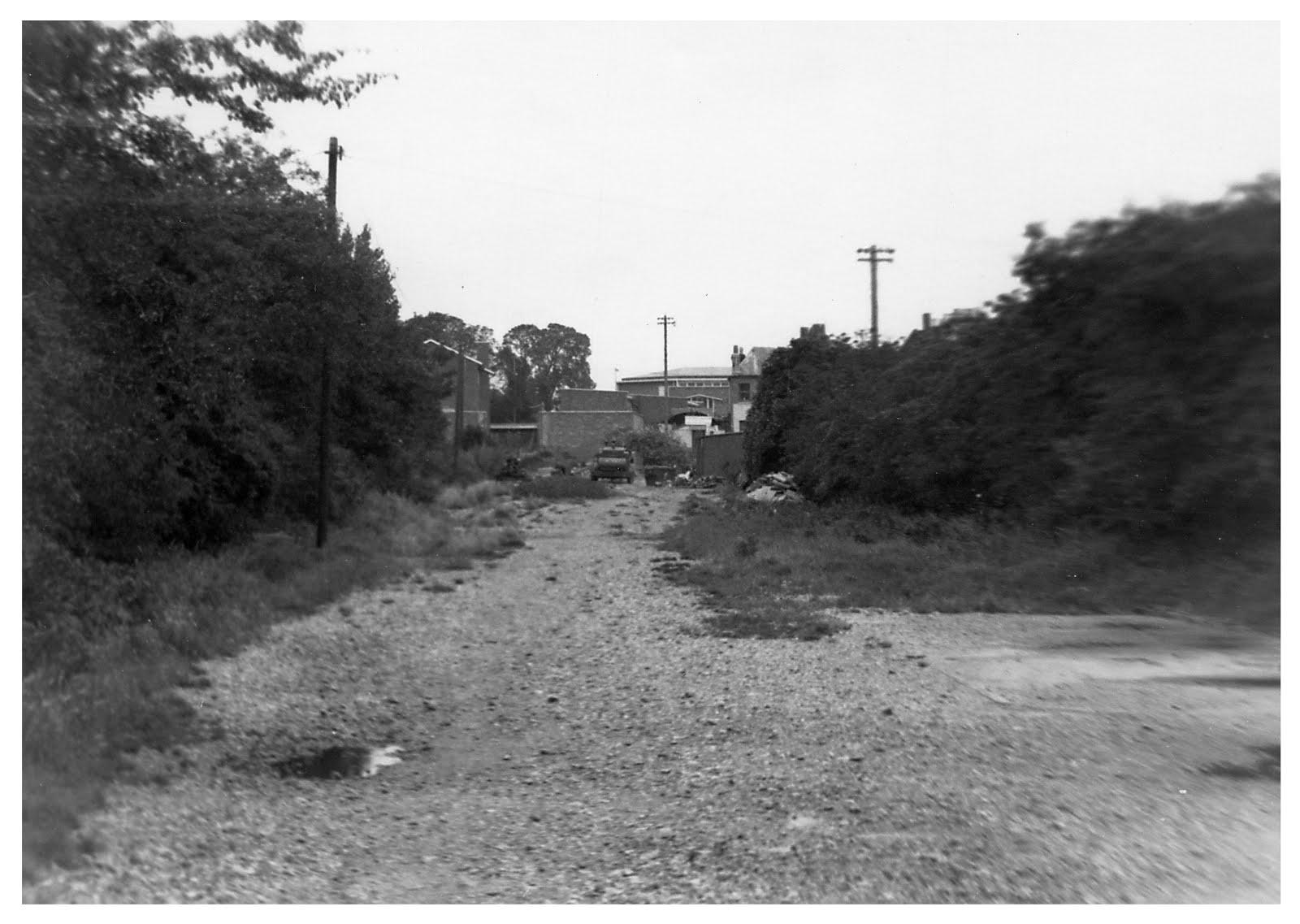 Stokes Bay trackbed