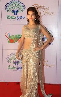 Actress Urvashi Rautela  Pictures in Designer Saree at Memu Saitam Dinner with Stars Red Carpet  43.jpg
