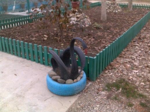 черные лебеди Крымска
