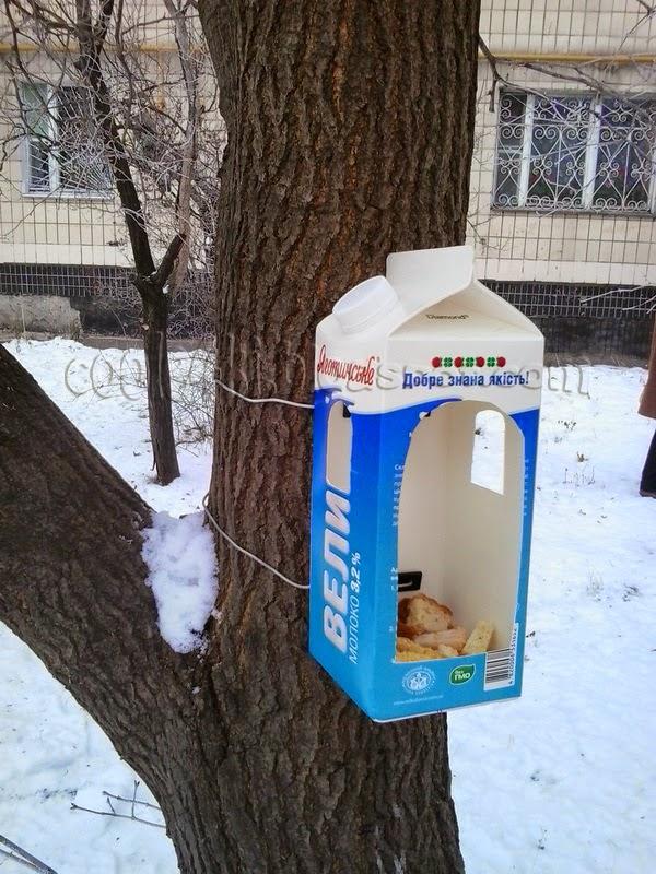 Кормушки для птиц своими руками из коробки