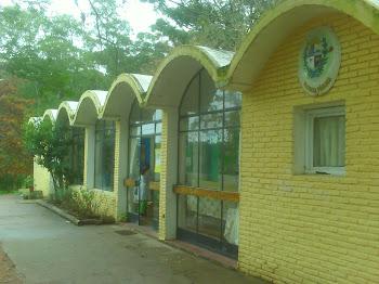 Escuela Nº36 Punta Ballena