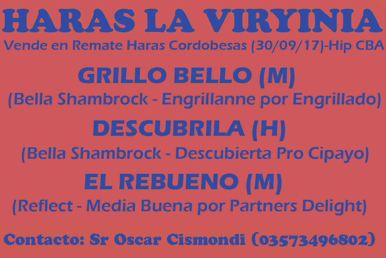 HS LA VIRYINIA REMATE CBA