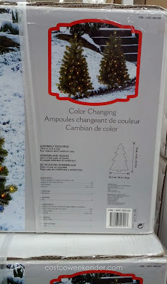 Bring some holiday cheer with LED Spruce Pathway Trees