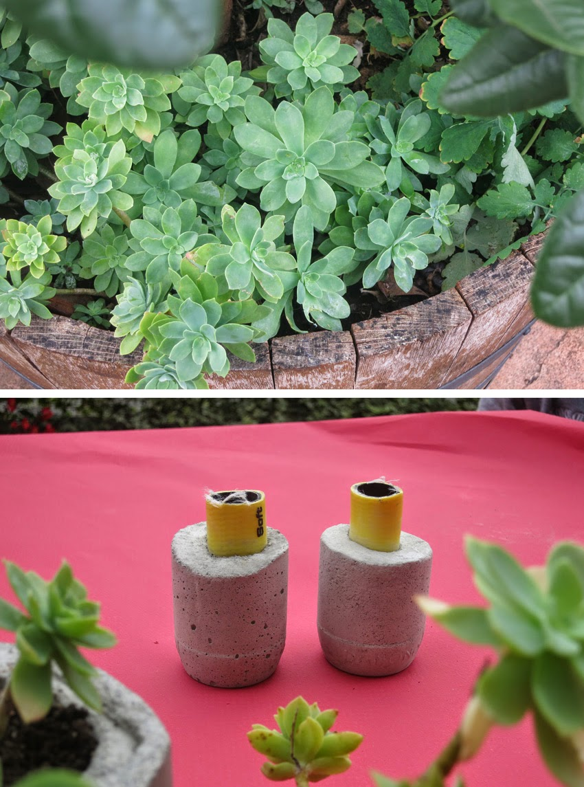 Diy Floreros de cemento pintados con suculentas2