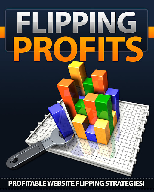 Make Money Website Flipping