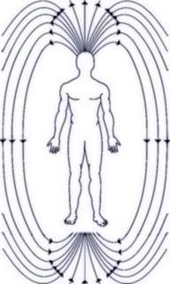 magnetic field 7 Pertanyaan Ilmiah Yang Masih Dicari Jawabannya Oleh Ilmuwan Sampai Sekarang