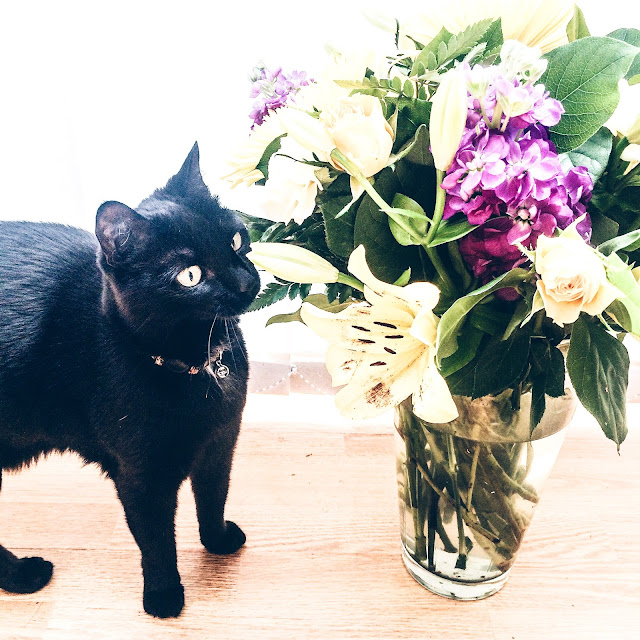 Black Cat with flower bouquet