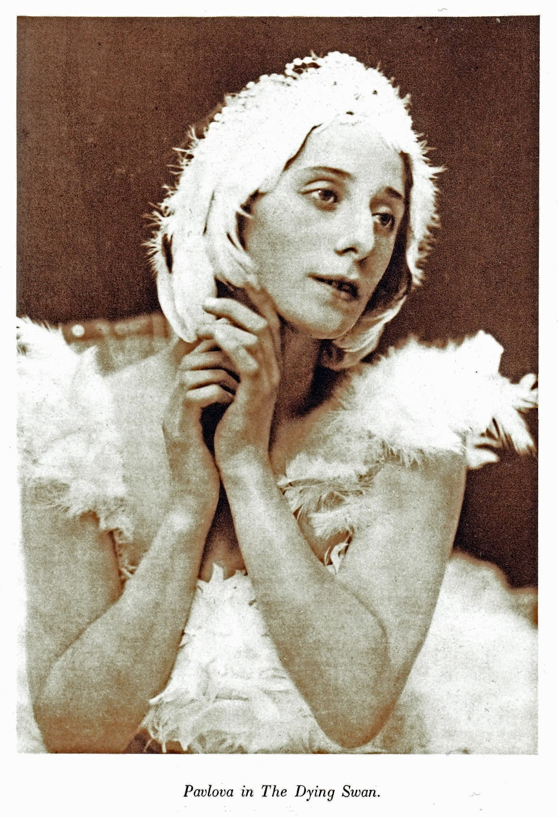 essays and diversions anna pavlova it was at ivy house a spacious villa on north end road in golders green that she established her home in 1912 and it was here that she befriended my